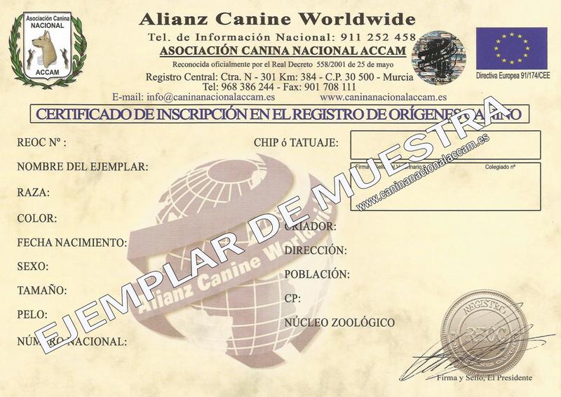 certificadocachorro1