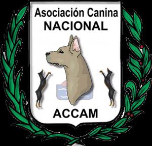 Exposicion Nacional de Chucena (Huelva) @ Chucena (Huelva)