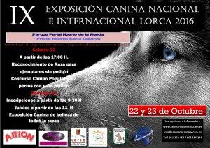 IX Exposición Canina Nacional e Internacional Lorca 2016 @ Parque Ferial Huerto de la Rueda | Lorca | Región de Murcia | España