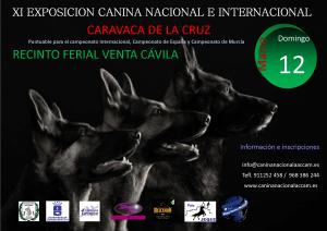 XI Exposición Nacional e Internacional de Caravaca de la Cruz @ Caravaca de la Cruz (Murcia)