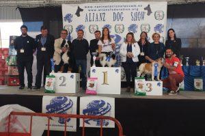 Alianz European Dog Show 2017 en Marina D'Or @ Palau D'Or