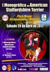 Monográfica American Staffordshire Terrier Arroyomolinos (Madrid) - Abril 2017 @ Plaza Mayor de Arroyomolinos, Madrid