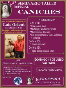 Seminario Taller Alianz Especial Caniches - Valencia