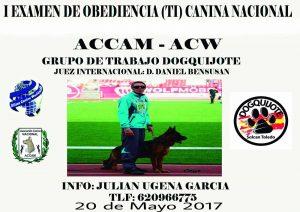 I EXAMEN DE OBEDIENCIA (TI) CANINA NACIONAL ACCAM TOLEDO- MAYO 2017 @ Centro Canino DogQuijote