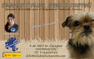 Seminario y taller de Stripping Alianz Zaragoza – Abril 2017 @ Centro Alianz Zaragoza