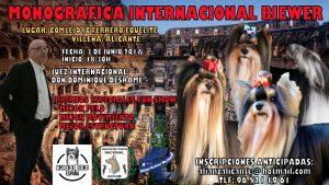 Monográfica Internacional Biewer Villena - Alicante 2017 @ Complejo JC Ferrero Equelite