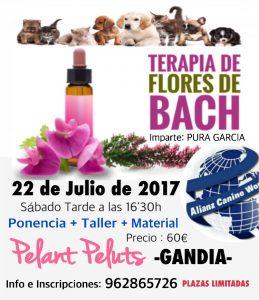 SEMINARIO FLORES DE BACH EN ANIMALES - ALIANZ GANDIA - JULIO 2017 @ Centro Alianz Gandia