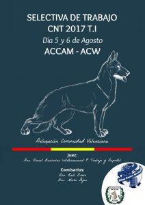 Selectiva de Trabajo ACCAM-ACW de la prueba TI en Valencia - Agosto 2017 @ centro canino Torre Jurado