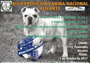 XIII Exposición Canina Nacional Alicante - Panoramis - Octubre 2017