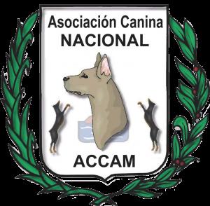 I Exposición Canina Nacional de Sant Jordi de Cercs - Barcelona - Octubre 2017 @ Sant Jordi de Cercs - Barcelona