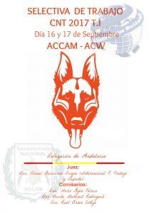 Selectiva de Trabajo ACW-ACCAM CNT T.I - Septiembre 2017