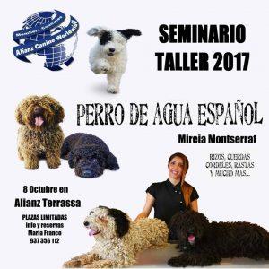 Seminario Taller Perro de Aguas Español Alianz Terrassa - Octubre 2017 @ centro Alianz Terrassa