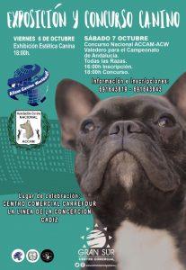 Concurso Canino Cádiz - Octubre 2017 @ Centro Comercial Carrefour