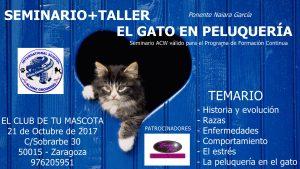 Seminario Taller El Gato en Peluqueria ACW Zaragoza - Octubre 2017 @ Centro Alianz Zaragoza