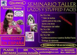 Seminario Taller Lazo y Stuffed Faces en Valencia - Enero 2018 @ Gosilandia