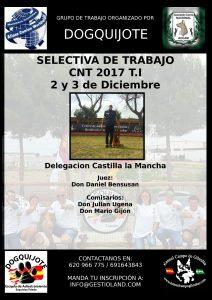 Selectiva de Trabajo CNT T.I. Castilla La Mancha - Diciembre 2017 @ Centro Canino DogQuijote