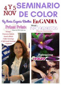 Seminario de Color Alianz Gandia - Noviembre 2017 @ Centro Alianz Gandia