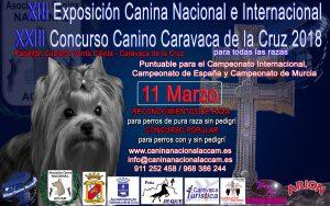 XIII Exposición Canina Nacional e Internacional  y XXIII Concurso Canino Caravaca de la Cruz 2018 @ Pabellón Cubierto Venta Cávila