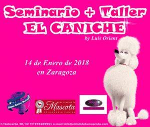 Seminario Taller El Caniche Alianz Zaragoza - Enero 2018 @ Centro Alianz Zaragoza