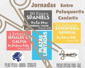 Jornadas Alianz entre Peluqueros Caninos- Gandia2018 @ Centro Alianz Gandia