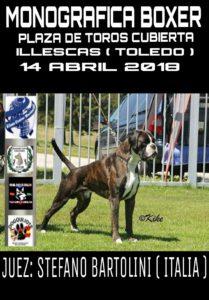 Monográfica de Boxer ACCAM - ACW Illescas , Toledo 2018 @ Plaza de Toros de Illescas - Toledo