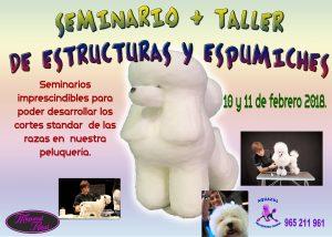 Seminario Taller de Estructuras y Espumiches Alianz Alicante 2018 @ Centro Alianz Alicante