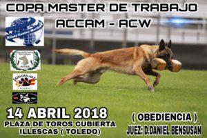 Copa Master de Trabajo ACCAM-ACW Abril 2018 @ Plaza de Toros de Illescas - Toledo