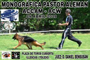 Monográfica de Pastor Alemán ACCAM - ACW Illescas , Toledo 2018 @ Plaza de Toros de Illescas - Toledo
