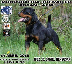 Monográfica de Rottweiler ACCAM - ACW Illescas- Toledo 2018 @ Plaza de Toros de Illescas - Toledo