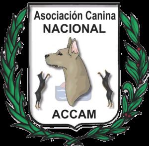 VIII Exposición Canina Nacional Ciudad de Murcia 2018