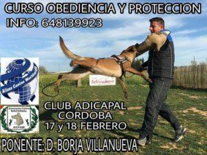Seminario de Obediencia y Protección - Cordoba 2018 @ club canino anker jerez