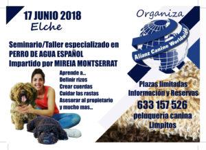 Seminario- Taller Perros de Aguas Español - Alianz Elche 2018 @ Centro Alianz Formación Elche