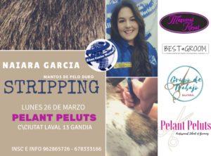 Seminario Stripping en Manto de Pelo Duro Alianz Gandia 2018 @ Centro Alianz Gandia