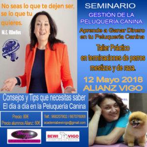 Seminario Gestión de la Peluquería Canina Alianz Vigo 2018 @ Centro Alianz Vigo