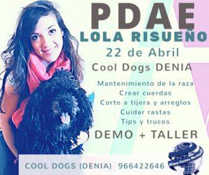 Seminario Taller Especial Perro de Aguas Español Alianz Denia - Abril 2018 @ Centro Alianz Denia