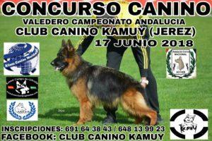 Concurso Canino de Jeréz 2018 Puntuable para Campeonato Andalucia. @ Club Canino Kamuy de Jerez