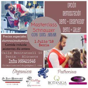 Master Class Schnauzer Alianz Denia Junio 2018 @ Centro Alianz Denia