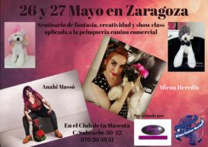 Seminario de Fantasia, Creatividad y Color aplicados a la Peluqueria Canina Comercial Alianz Zaragoza 2018 @ Centro de Formación Alianz Zaragoza