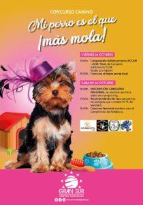 Exposición Canina Nacional Cádiz 2018 @ Centro Comercial Gran Sur