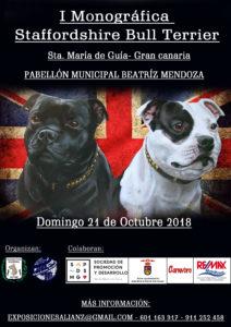 I Monográfica de Staffordshire Bull Terrier Gran Canaria 2018 @ Sta. María de Guía de Gran Canaria