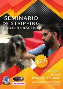 Seminario y taller práctico de Stripping Alianz Elche @ Centro Alianz Formación Elche