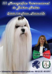 Monográfica Internacional raza Bichón Maltes 30 Aniversario ACCAM-ACW Marina d ´Or 2019 @ Marina d´Or