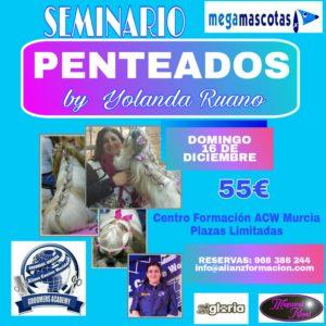 Seminario de Técnicas en Penteados ACW Murcia 2018 @ Clinica Veterinaria Megamascotas