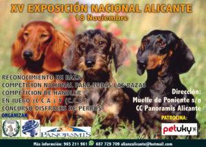 XV Exposición Canina Nacional de Alicante 2018 @ CC Panoramis Alicante