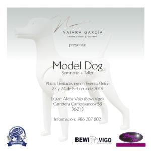 Seminario- Taller de Model Dog ACW Vigo 2019 @ Centros de Formación ACW Vigo