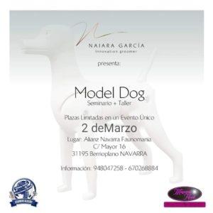 Seminario- Taller de Model Dog ACW Navarra 2019 @ Centro de Formación ACW Navarra