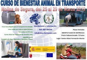 Curso Oficial ACW-ACCAM de Bienestar Animal en el Transporte 2019 @ Alianz Canine Worldwide- Sede Central