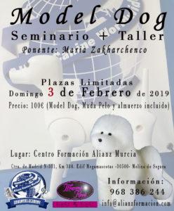 Seminario+Taller ACW Model Dog Murcia Febrero 2019 @ Centro Formación ACW Murcia