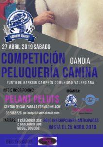 Competición de Grooming ACW en Gandia- Abril 2019 @ ACW Gandia