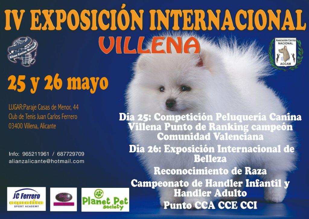 IV Exposición Canina Internacional Villena 2019 @ Club de Tenis Juan Carlos Ferrero de Villena